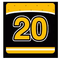 Bruins Fan